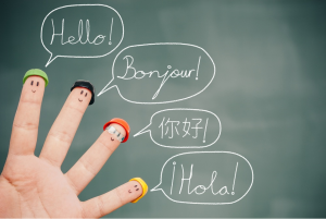 Ling fluent leo anders metodo